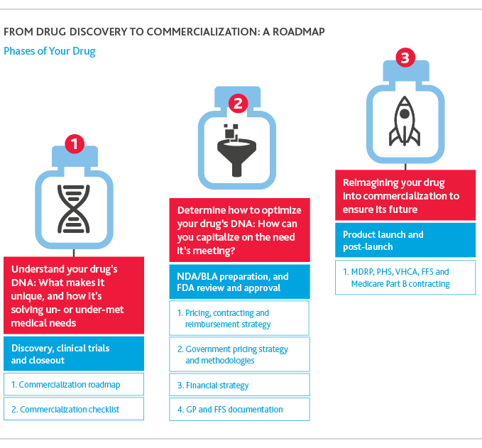 From drug discovery to commercialization: A roadmap