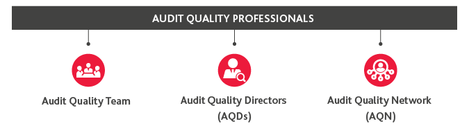 B-Audit-Quality-Professionals.png