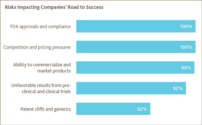 Risks Impacting Companies' Road to Success