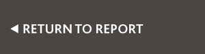 return-to-report-button-(1).png