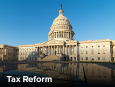 View Tax Reform